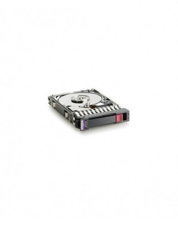 """HP SRV HDD 300GB,10K 2,5"""" DP 6G SAS"""