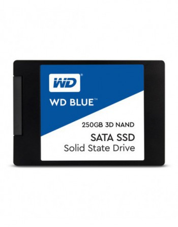 WD 250GB SATA BLUE 2,5 inc SSD